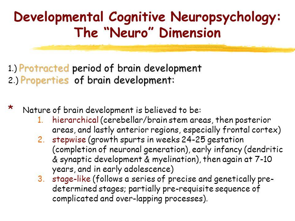 Developmental Cognitive Neuropsychology: The Neuro Dimension