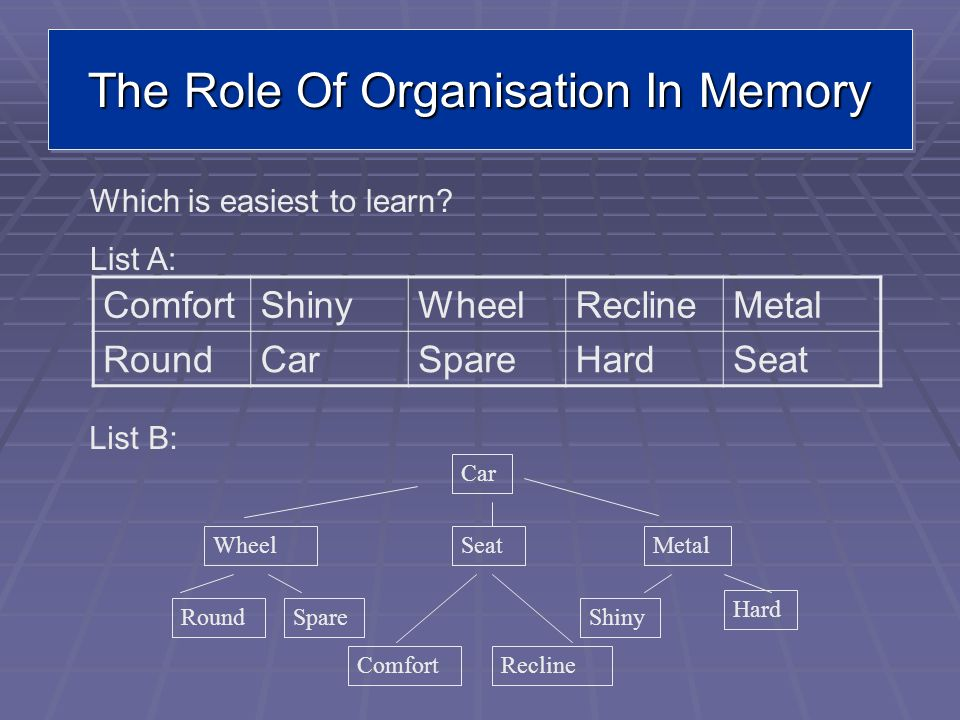 The Role Of Organisation In Memory