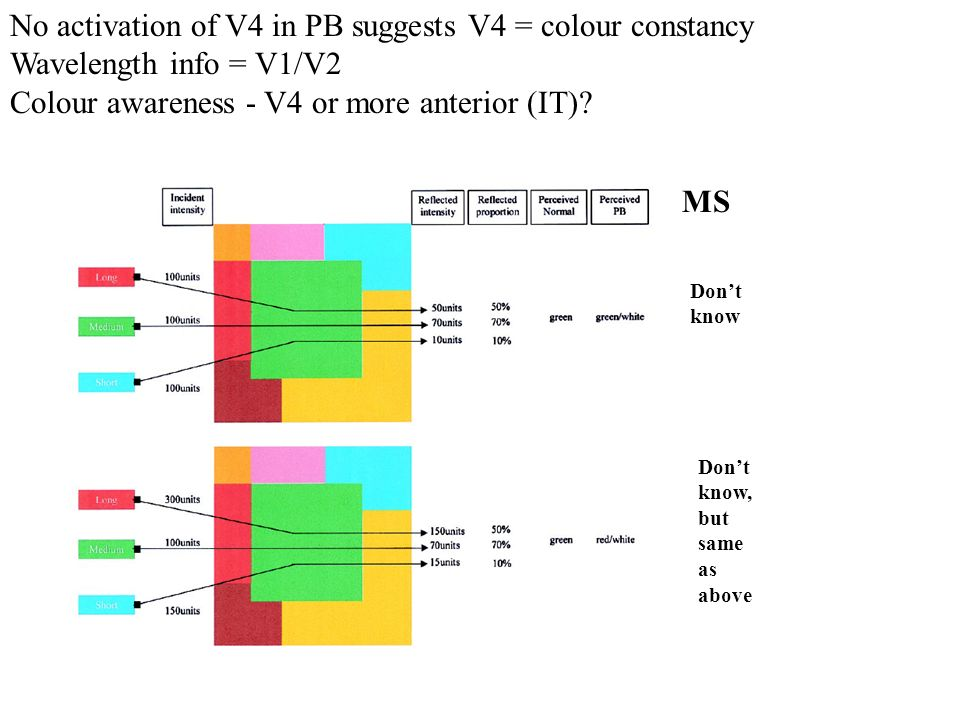 No activation of V4 in PB suggests V4 = colour constancy