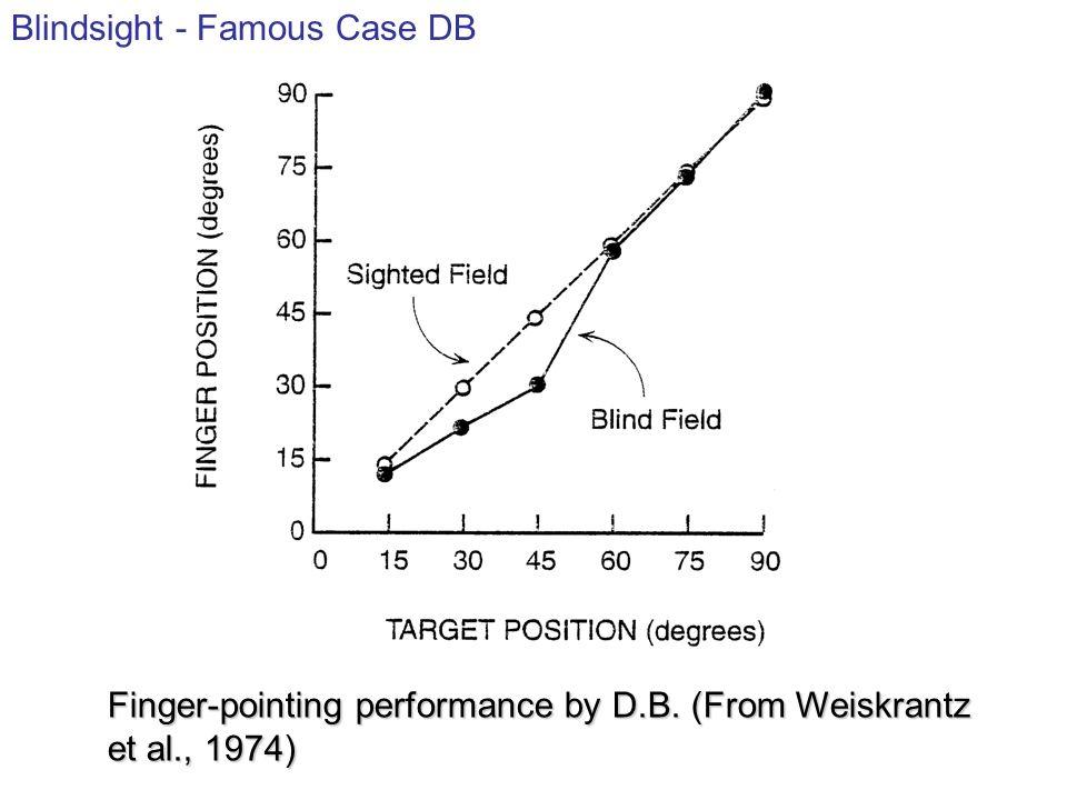 Blindsight - Famous Case DB
