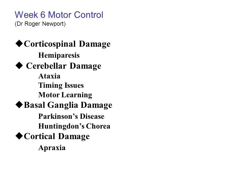 Week 6 Motor Control Corticospinal Damage Hemiparesis