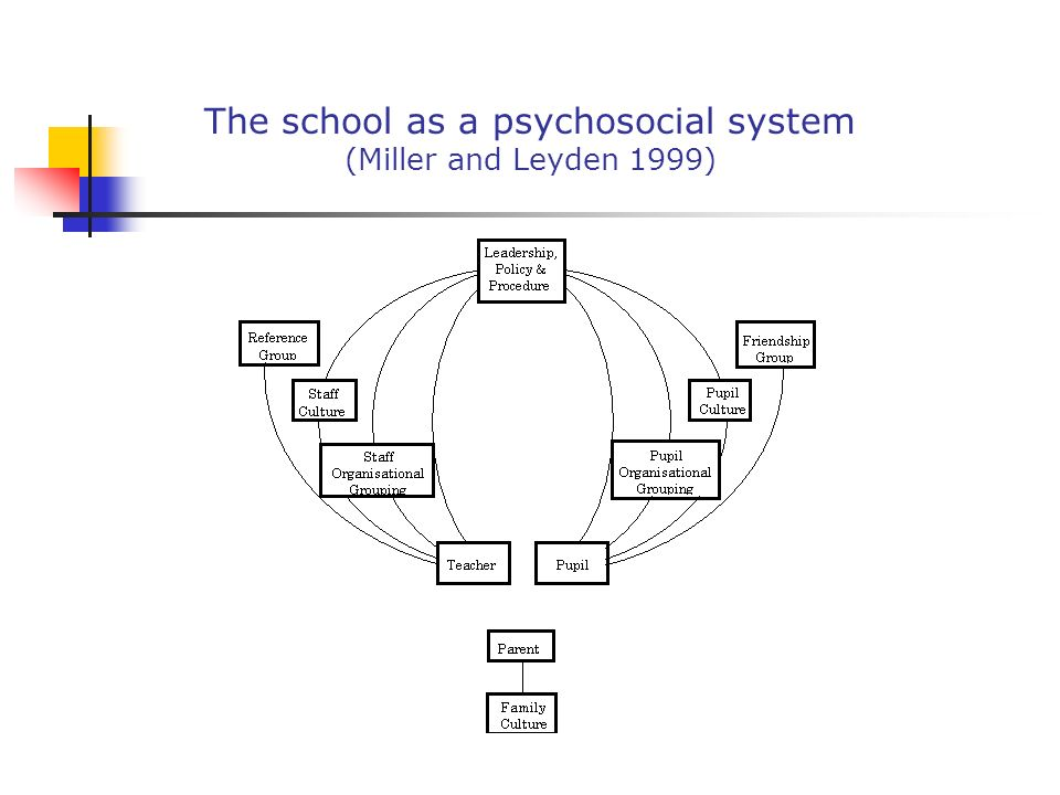 The school as a psychosocial system (Miller and Leyden 1999)