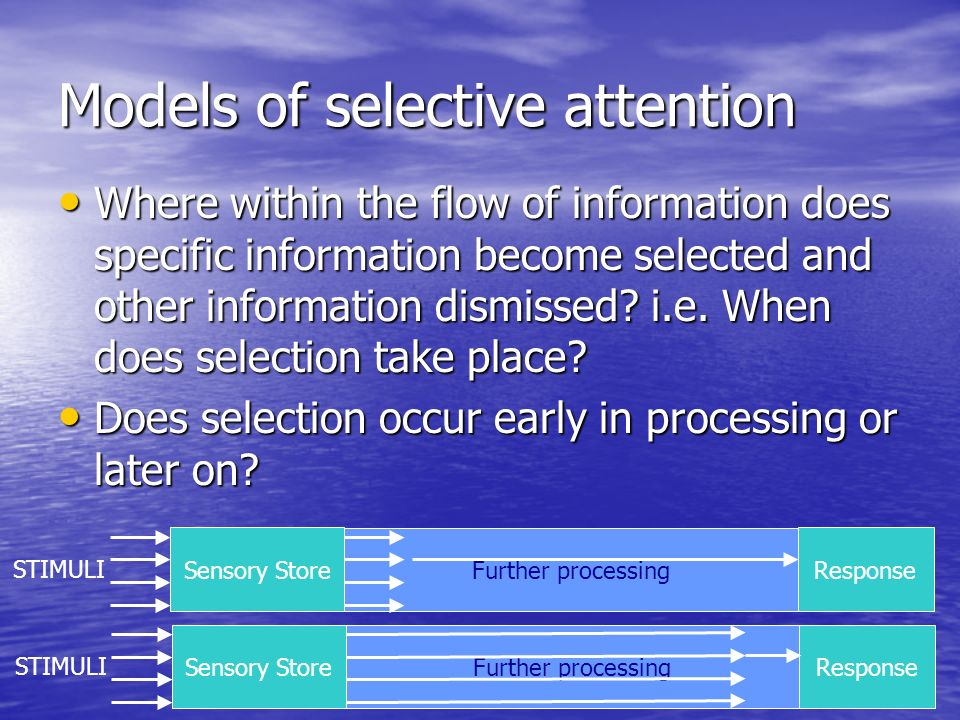 Models of selective attention