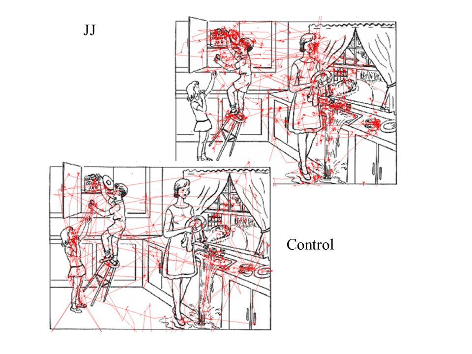 JJ Control