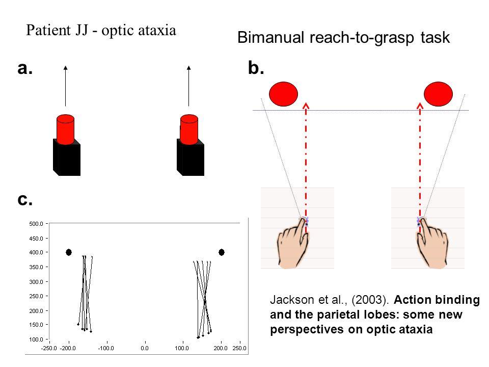 Bimanual reach-to-grasp task