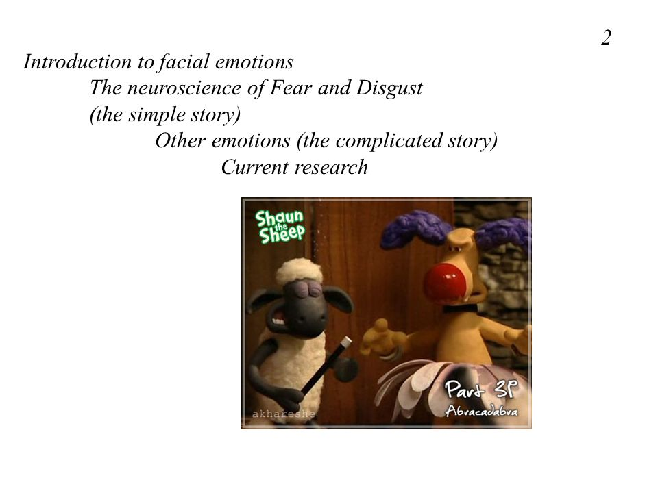 2 Introduction to facial emotions. The neuroscience of Fear and Disgust. (the simple story) Other emotions (the complicated story)