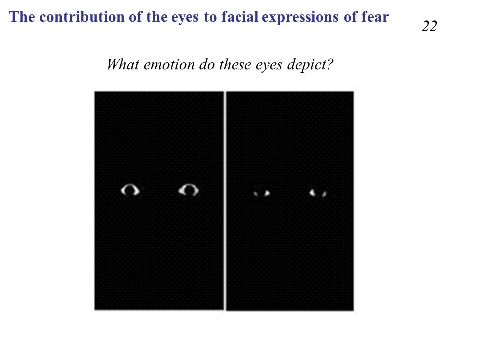 The contribution of the eyes to facial expressions of fear