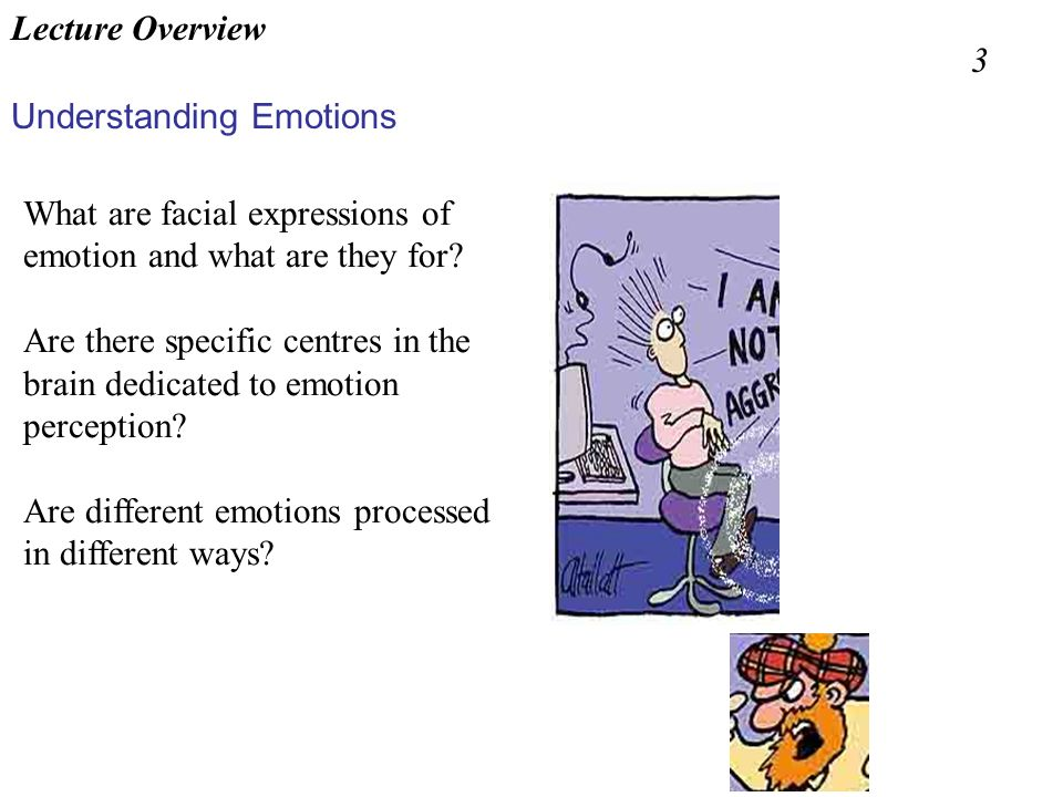 Lecture Overview 3. What are facial expressions of emotion and what are they for