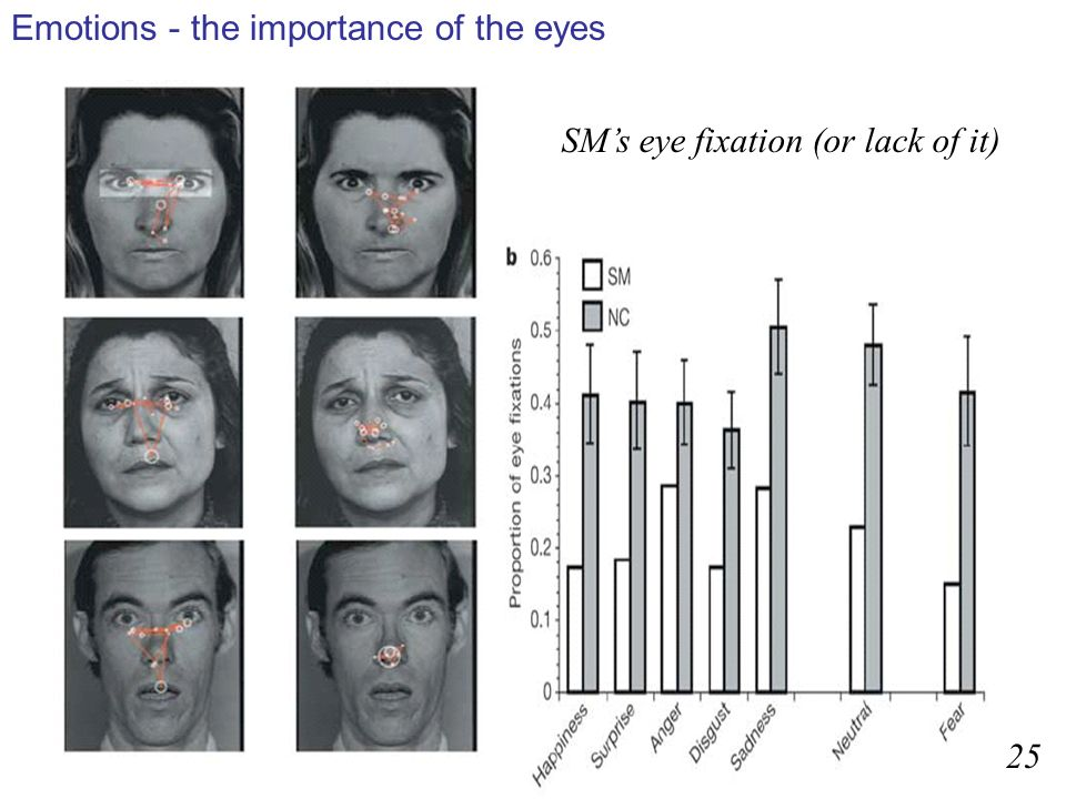 Emotions - the importance of the eyes