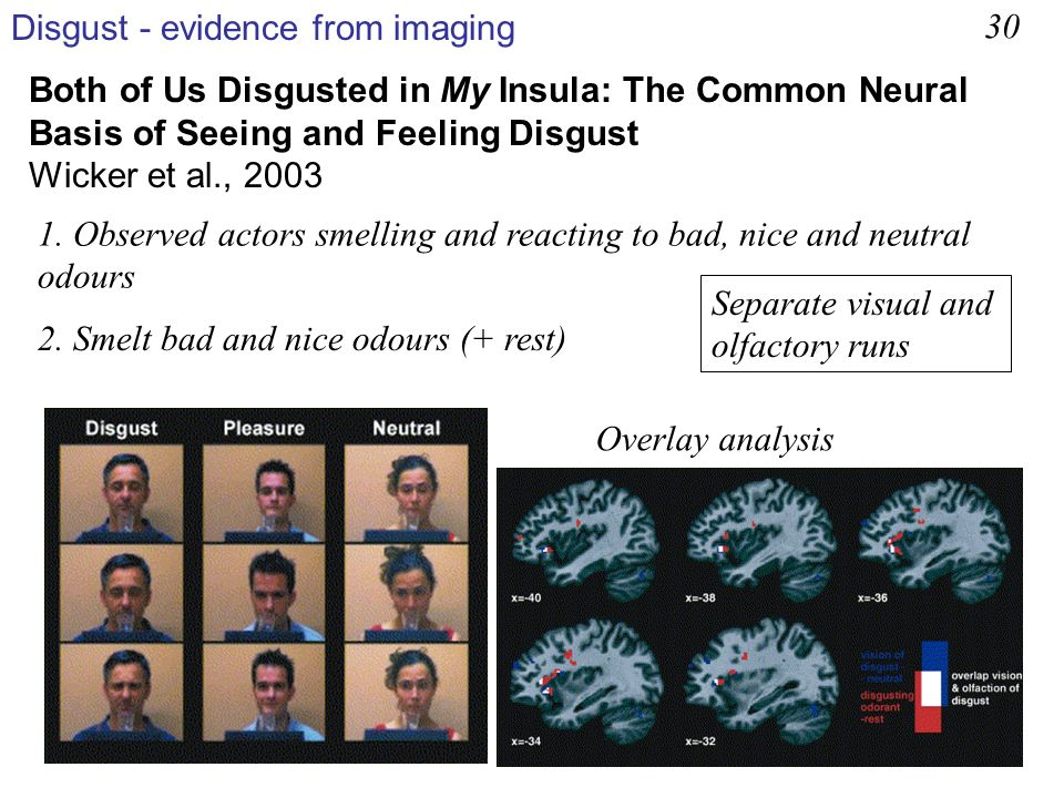 Disgust - evidence from imaging