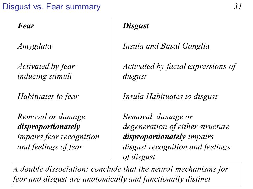 Disgust vs. Fear summary