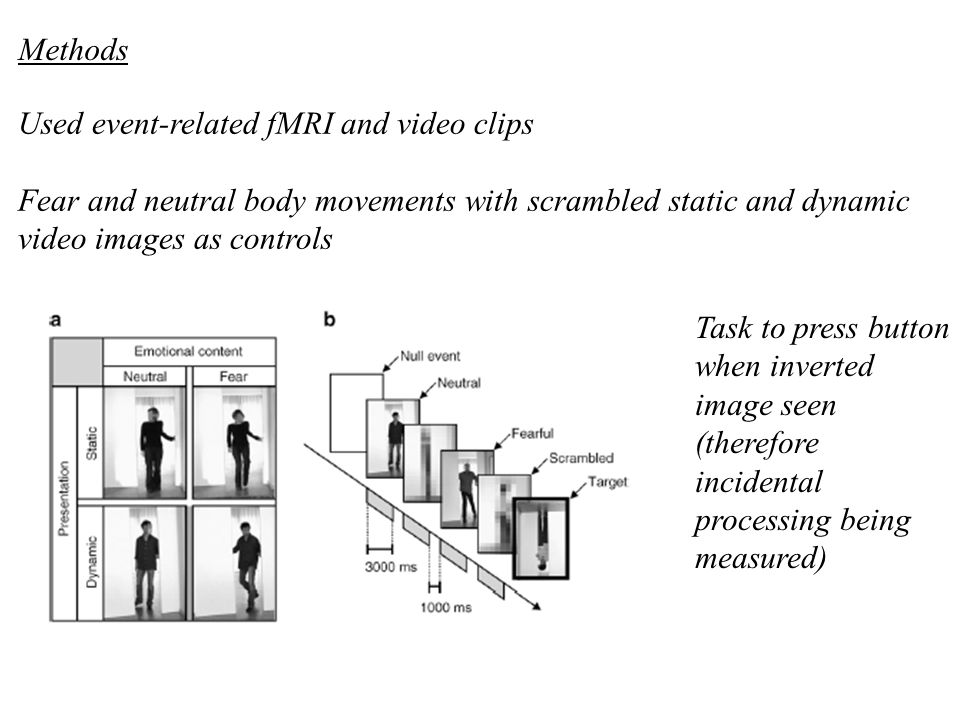 Methods Used event-related fMRI and video clips. Fear and neutral body movements with scrambled static and dynamic video images as controls.