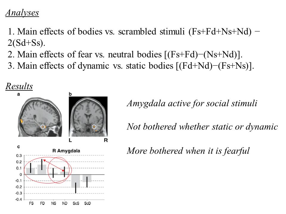 Analyses 1. Main effects of bodies vs. scrambled stimuli (Fs+Fd+Ns+Nd) − 2(Sd+Ss). 2. Main effects of fear vs. neutral bodies [(Fs+Fd)−(Ns+Nd)].