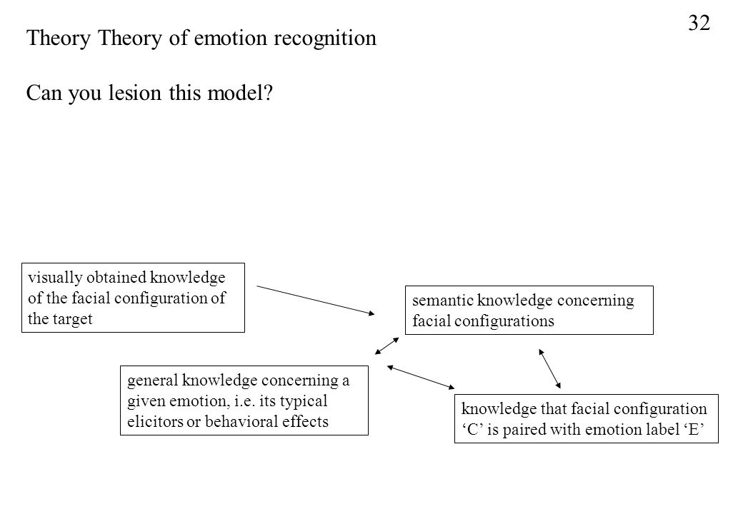 Theory Theory of emotion recognition Can you lesion this model