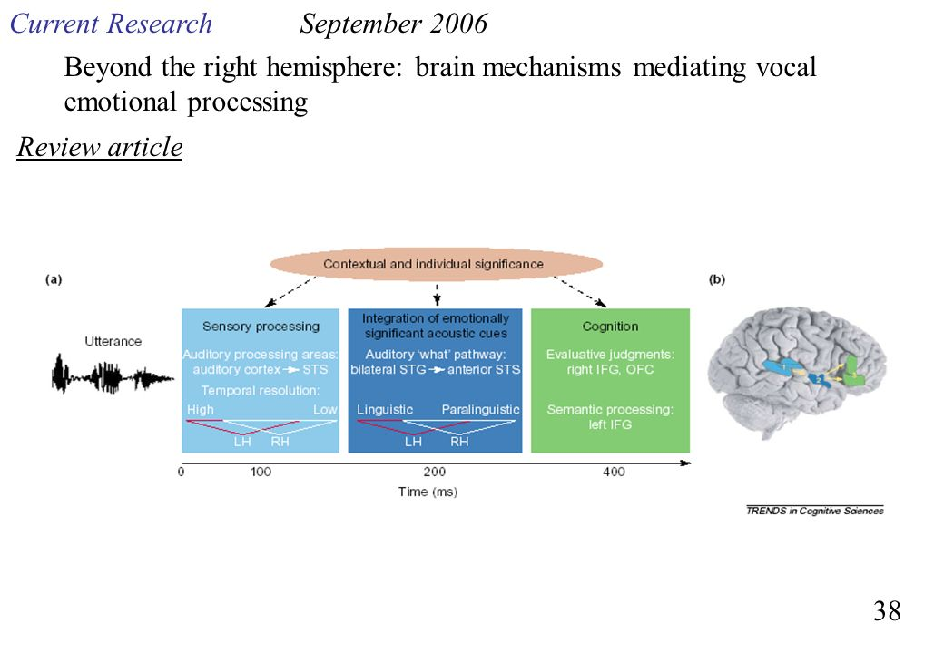 Current Research September Beyond the right hemisphere: brain mechanisms mediating vocal emotional processing.