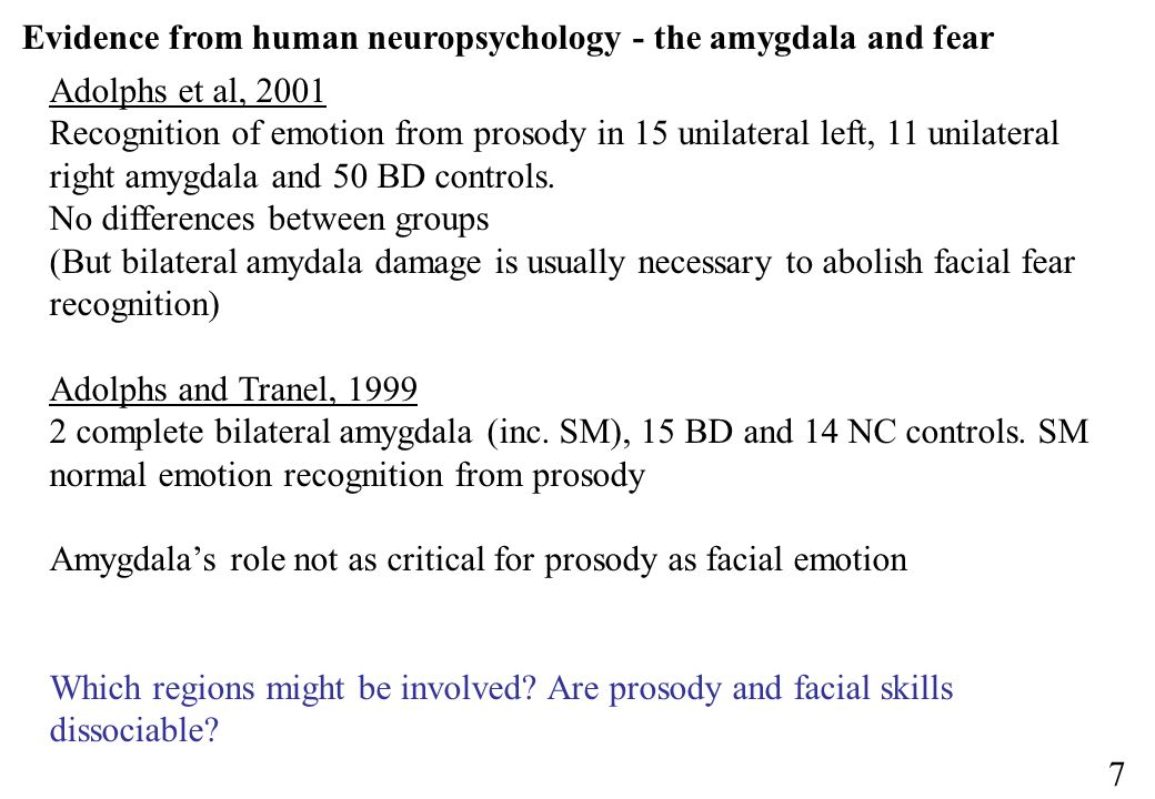 Evidence from human neuropsychology - the amygdala and fear