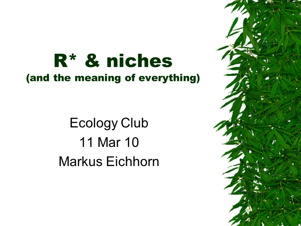 R* & niches (and the meaning of everything)