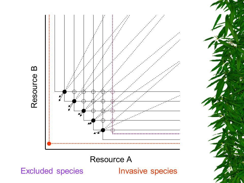 Resource B Resource A Excluded species Invasive species