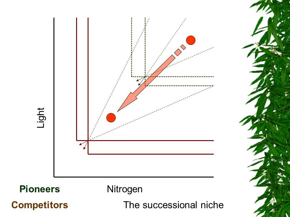 The successional niche