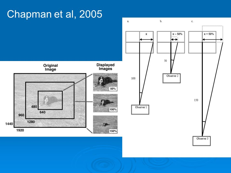 Chapman et al, 2005
