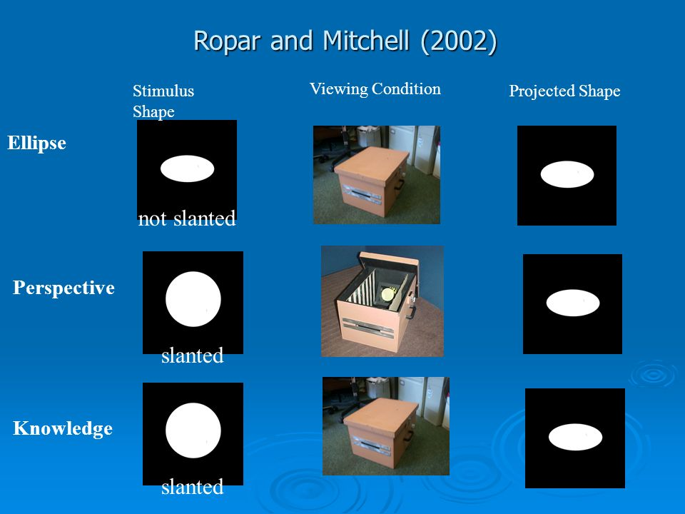 Ropar and Mitchell (2002) not slanted slanted slanted Ellipse