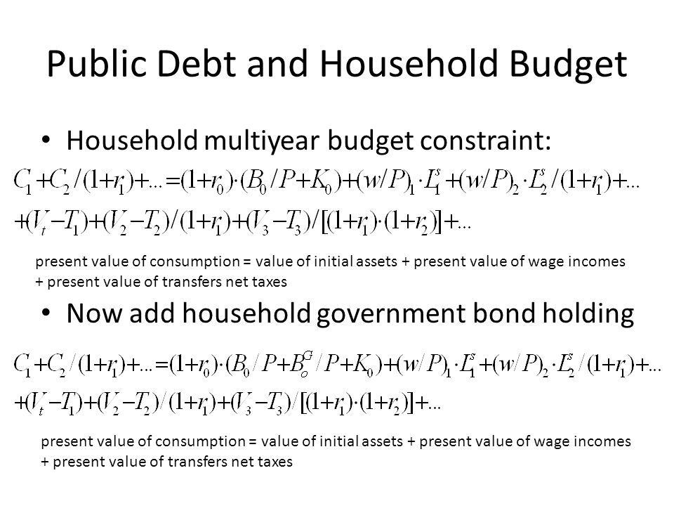 Public Debt and Household Budget