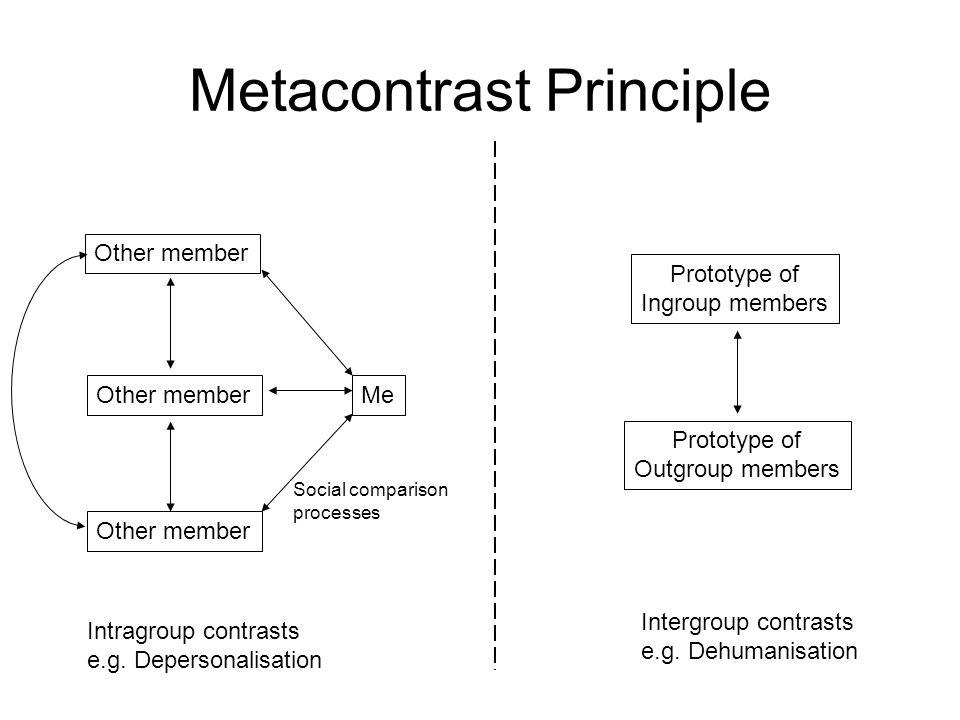 Metacontrast Principle