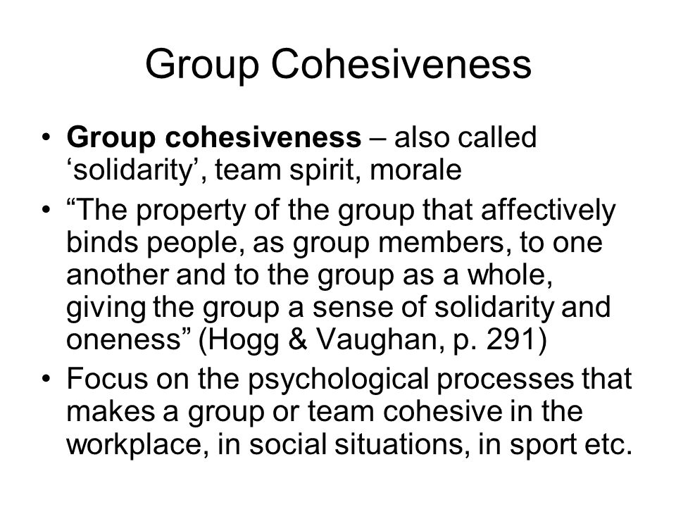Group Cohesiveness Group cohesiveness – also called 'solidarity', team spirit, morale.
