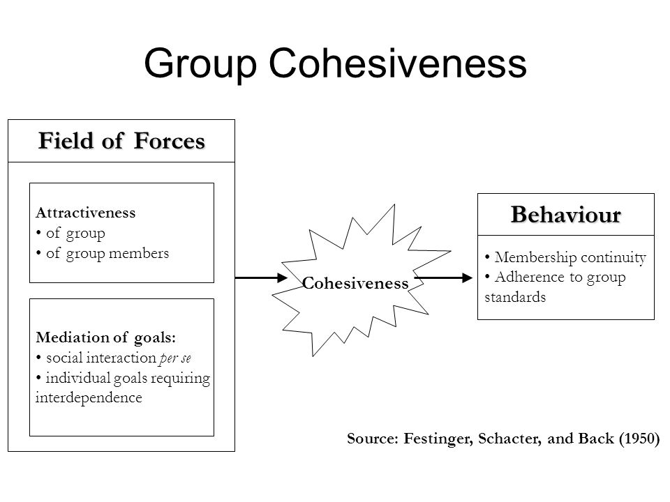 Group Cohesiveness Field of Forces Behaviour Cohesiveness
