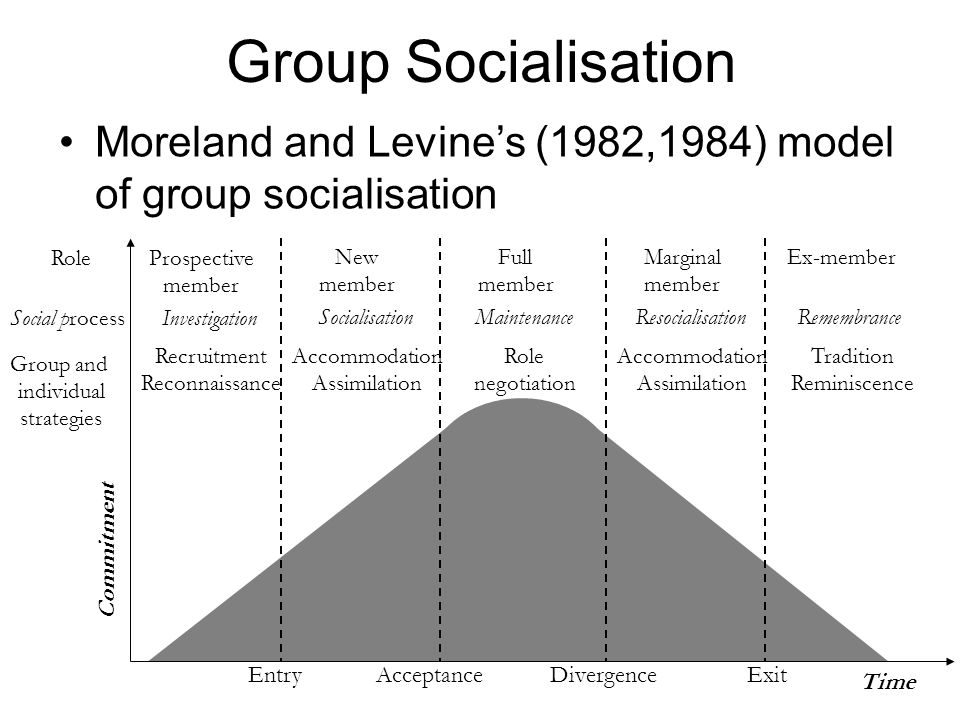 Group Socialisation Moreland and Levine's (1982,1984) model of group socialisation. Role. Prospective.