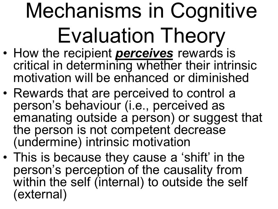 Mechanisms in Cognitive Evaluation Theory