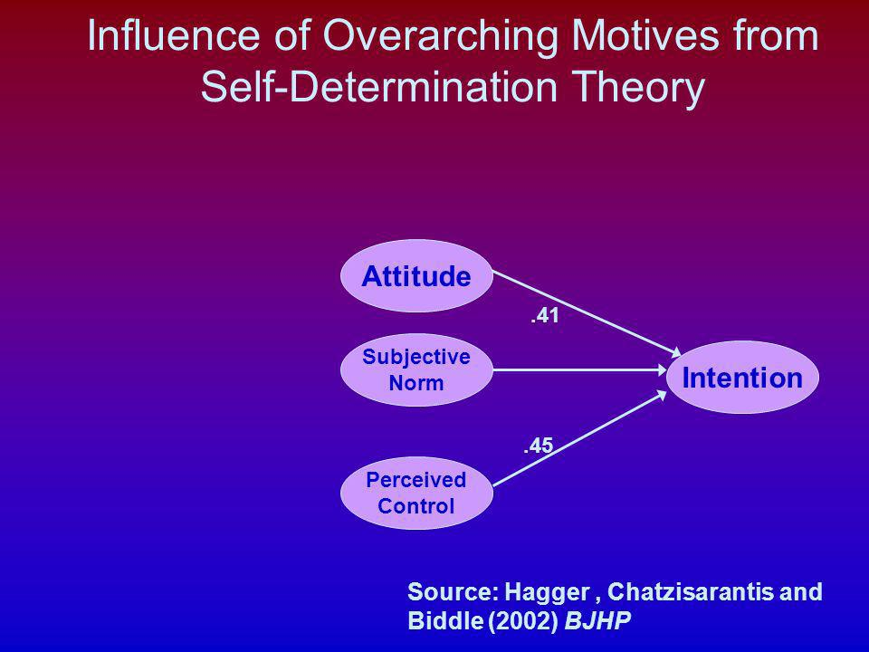 Influence of Overarching Motives from Self-Determination Theory