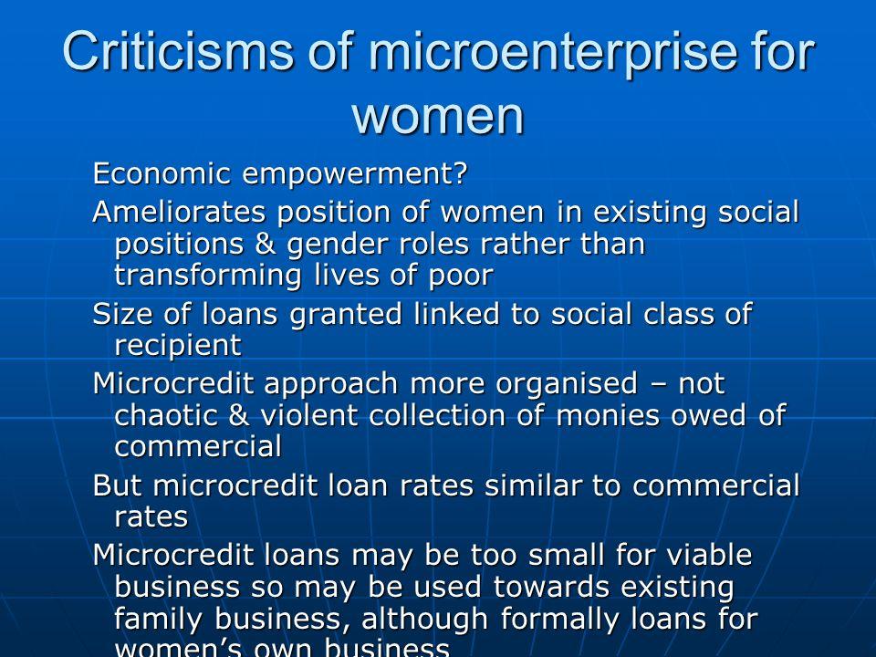 Criticisms of microenterprise for women