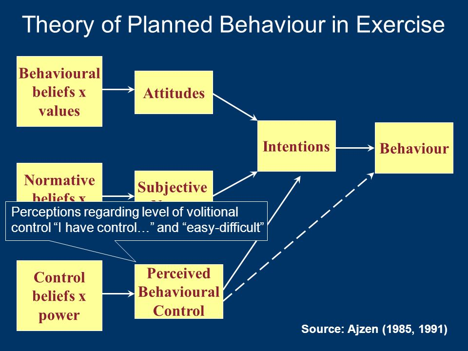 Theory of Planned Behaviour in Exercise