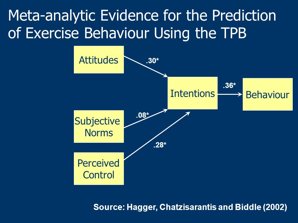 Meta-analytic Evidence for the Prediction of Exercise Behaviour Using the TPB