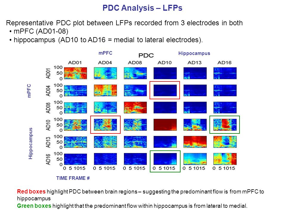 PDC Analysis – LFPs Representative PDC plot between LFPs recorded from 3 electrodes in both. mPFC (AD01-08)