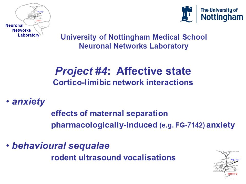 Project #4: Affective state