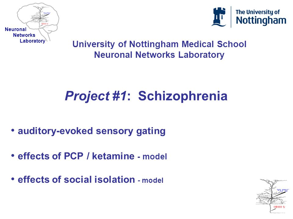 Project #1: Schizophrenia