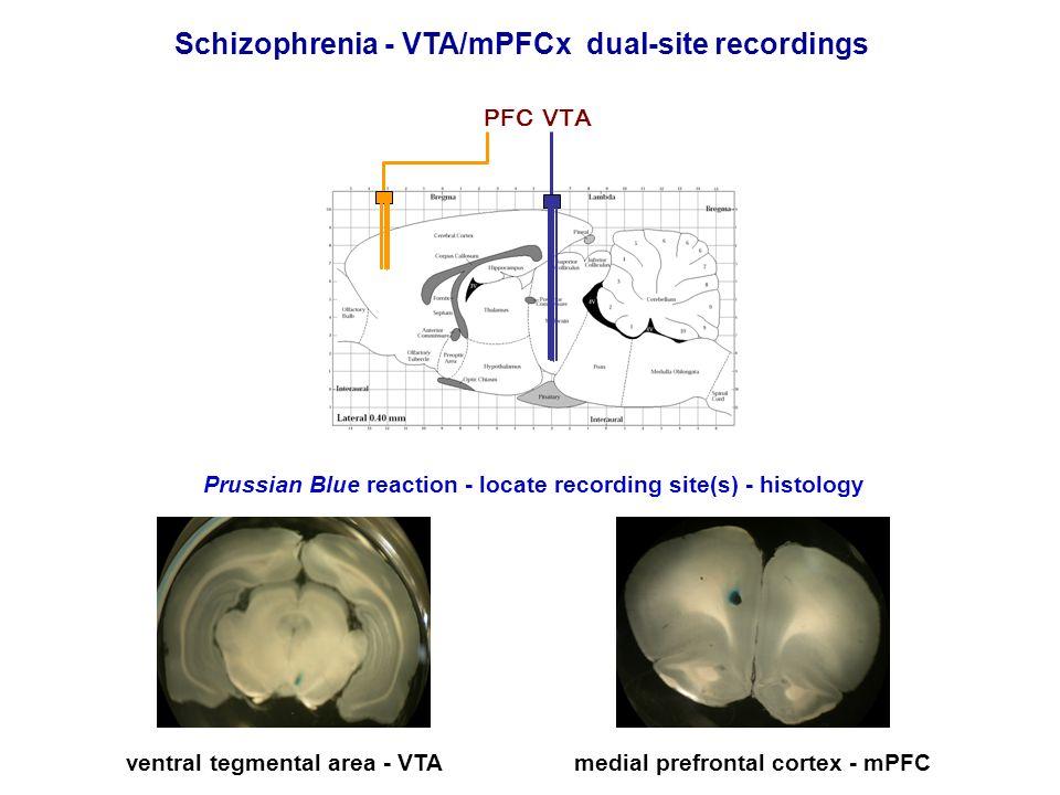 Schizophrenia - VTA/mPFCx dual-site recordings