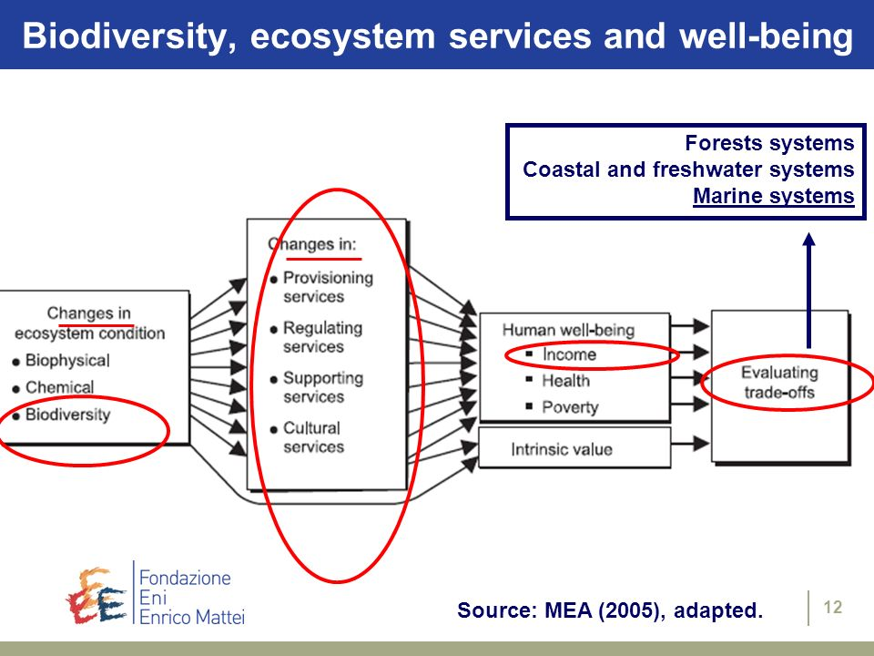 Biodiversity, ecosystem services and well-being
