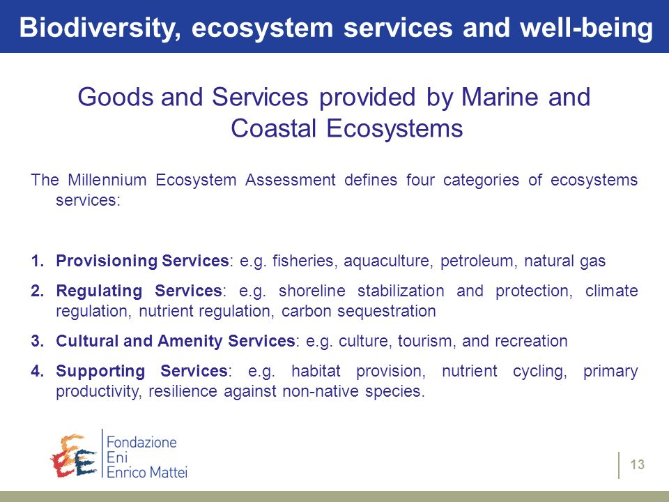 Goods and Services provided by Marine and Coastal Ecosystems