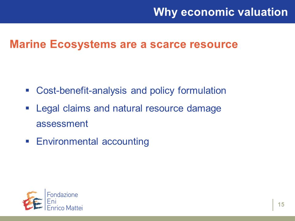 Why economic valuation