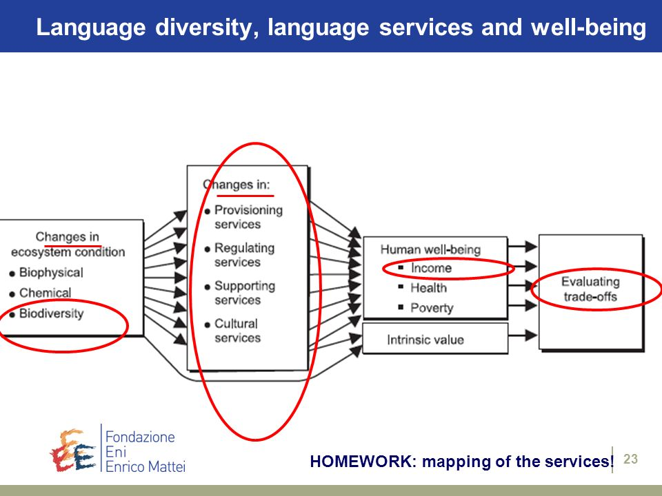 Language diversity, language services and well-being