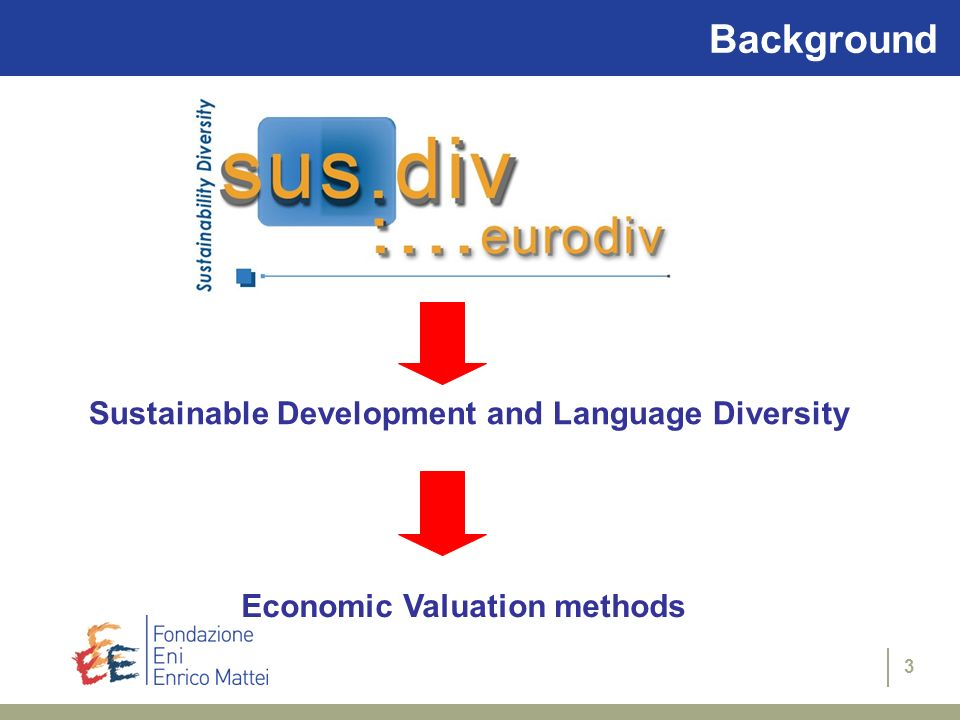 Background Sustainable Development and Language Diversity