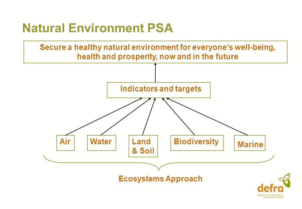 Natural Environment PSA