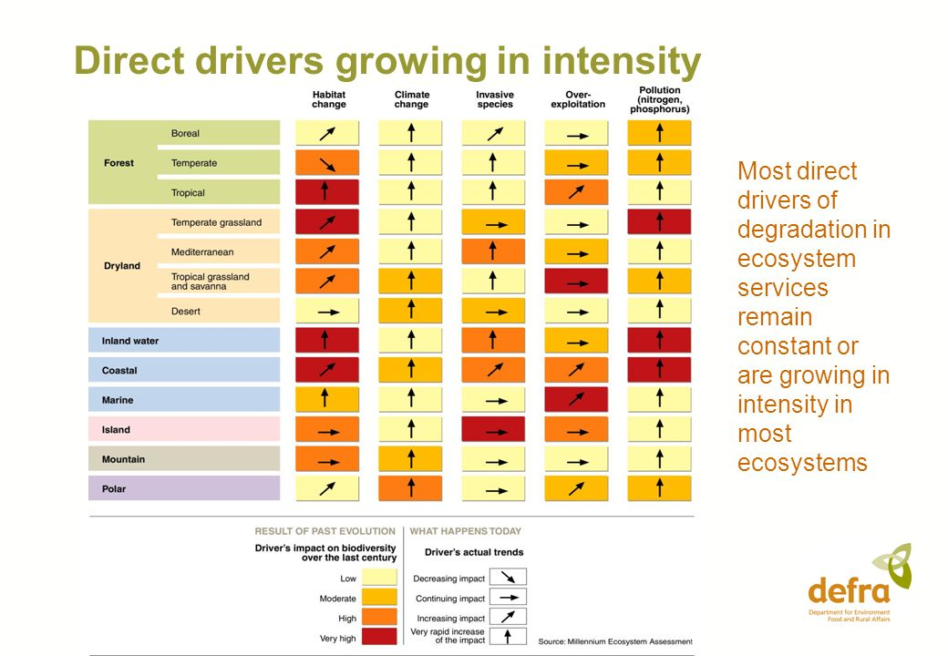 Direct drivers growing in intensity