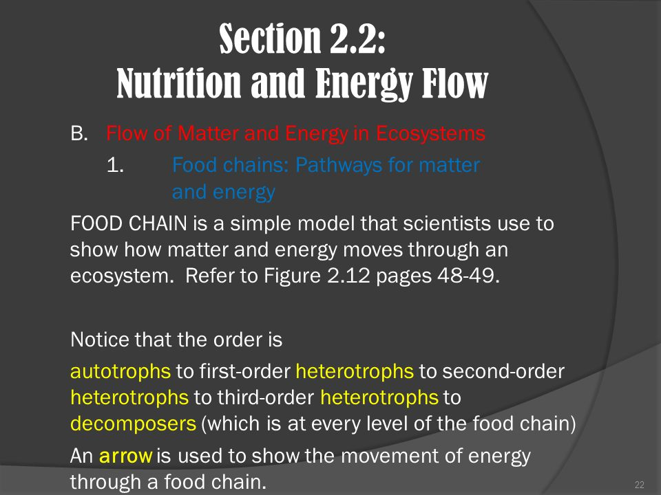 Section 2.2: Nutrition and Energy Flow