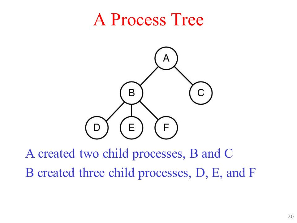 A Process Tree A created two child processes, B and C