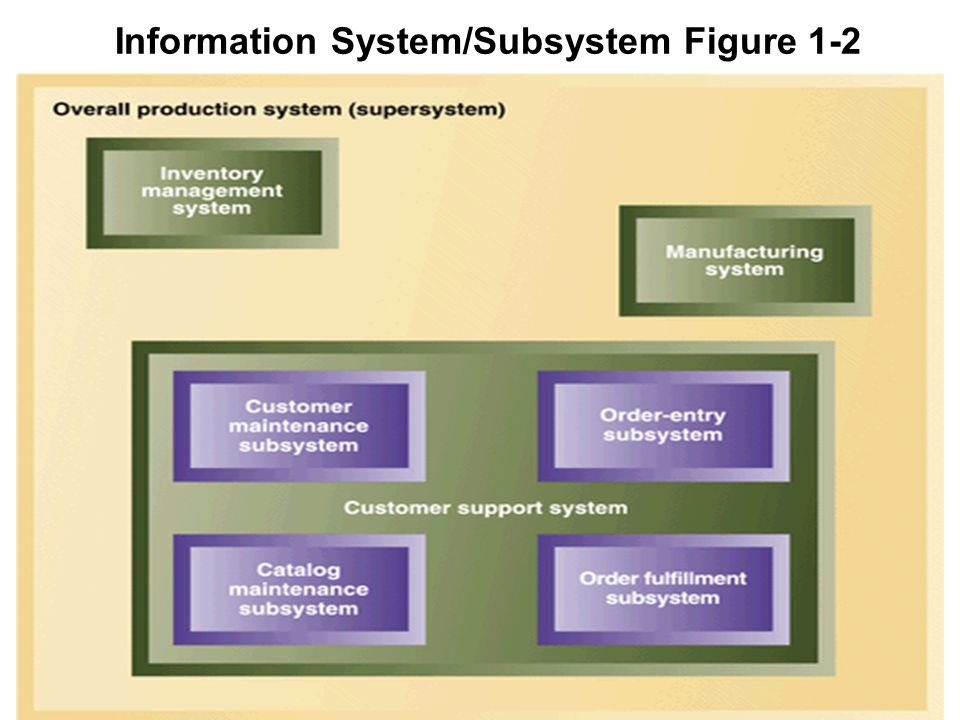 Information System/Subsystem Figure 1-2