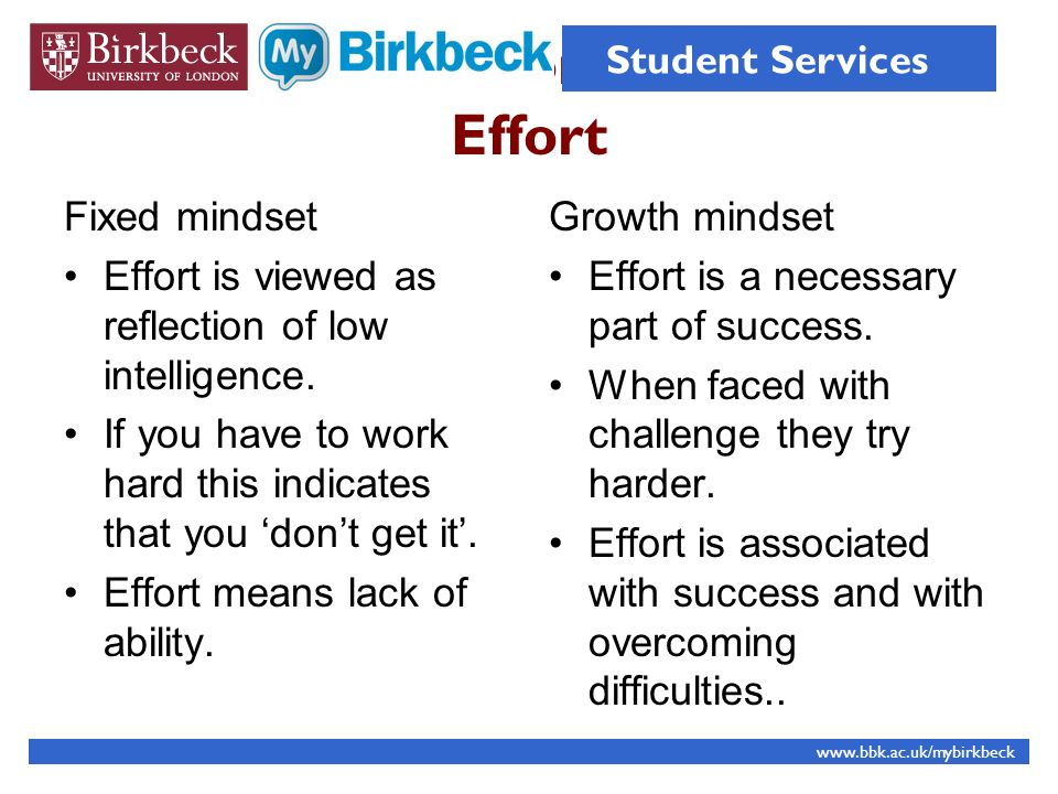 Effort Effort Fixed mindset